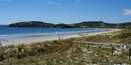 cording to the Niwa seasonal outlook temperatures are expected to sit above average across all of New Zealand. Photo / File